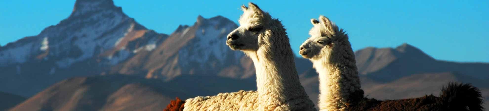 Séjour Pérou
