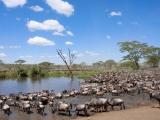 Voyage sur-mesure tanzania